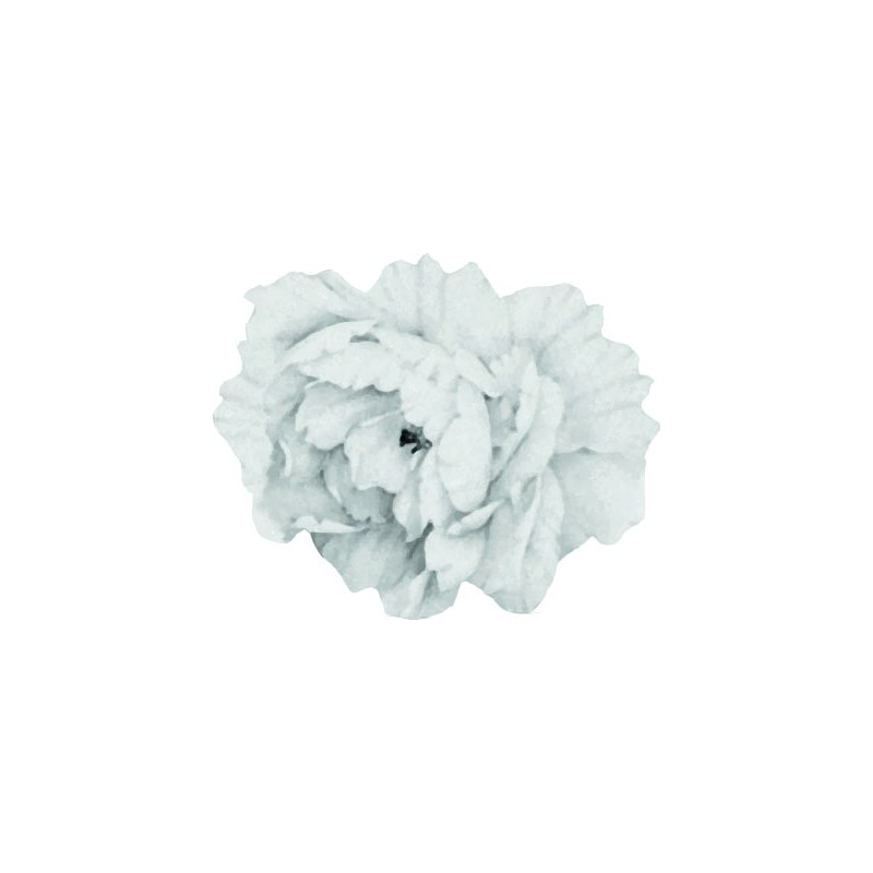 Medium White Peony Flower...