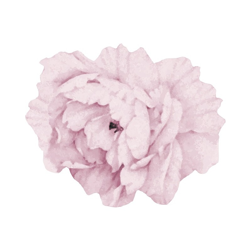 Medium Light Pink Peony...